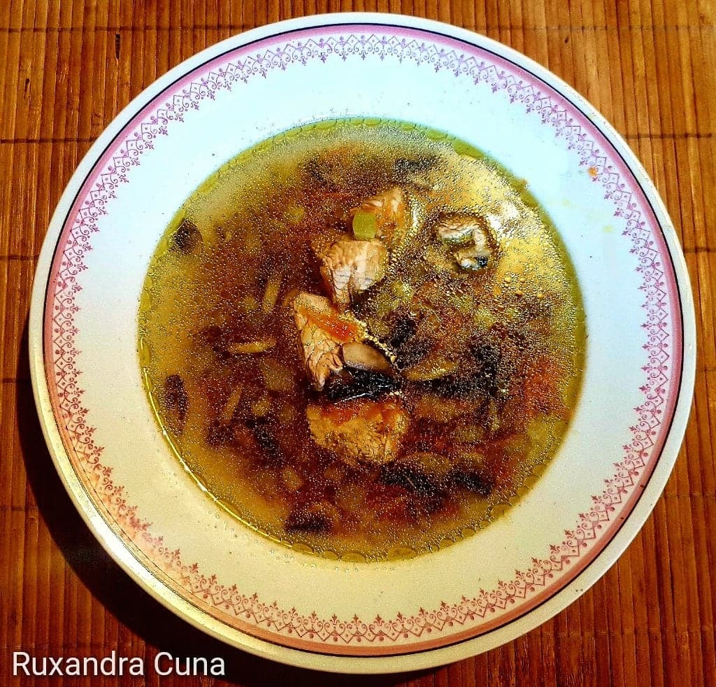 "Aip Cauliflower Soup ciorba"" turkey soup – aip and paleo 